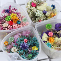6G Dried Flower Candle Resin Epoxy Filling Pendant Jewelry Making Art Craft DIY