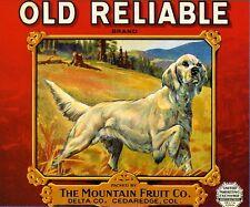 Cedaredge Colorado Reliable White Setter Dog Apple Fruit Crate Label Art Print