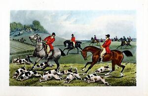 FOX HOUNDS HORSES HUNTING FOX ANTIQUE PRINT BY HENRY ALKEN SPORTING SCENE HUNT