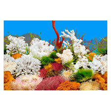 Fish Tank Stone Background Painting Double Sided Fish Tank Landscape Decor GO9