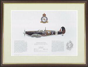 "Spitfire picture ""Supermarine Spitfire Mk Vb"" by M.A.Kinnear  - NGAP09"