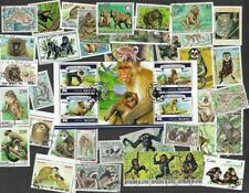Monkeys-Apes lemurs --100 all different stamp packet collection