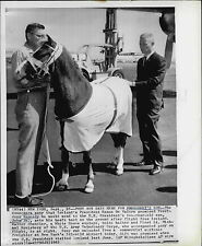 1963 John Kennedy Jr Pony Arrives from Ireland Press Photo
