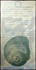 Scott Sandell #86.1 signed ORIGINAL monoprint ART shell green SUBMIT OFFER