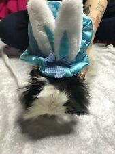 Guinea Pig Pet Hat Small Blue Cute Velcro Fashion Easter Spring Rabbit Spring