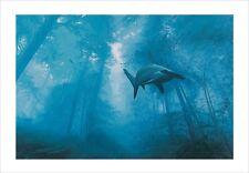 Josh Keyes Phantom Art Poster Print DOLK Shepard Fairey Space Invader DALeast