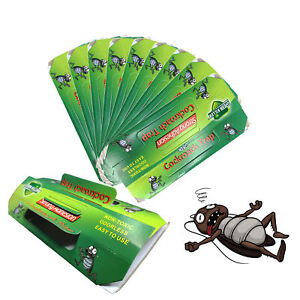 10 Packs Cockroach Trap Bait Roach Motel Non Toxic Cockroach Killer Indoor Home