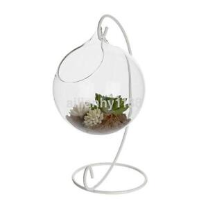 10cm Ball Shape Planter Hanging Glass Vase Flower Hydroponic Plant Bottle Tank S