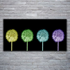 deko bilder drucke mit panorama von pusteblume aus glas ebay. Black Bedroom Furniture Sets. Home Design Ideas