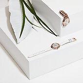 Relojes, recambios y accesorios