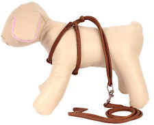 Rolled Leather Dog Harness Step-in Leash Set Adjustable Small Puppy Brown