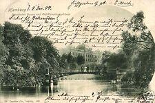 13234/ Foto AK, Hamburg, Botanischer Garten und Zolldirektionsgebäude, 1899