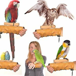 Avianweb™ Arm & Hand Perch