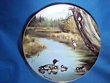 "DANBURY MINT Ducks ""The Swimming Lesson"" from ""Wonders of the Wetlands"" 1983 NIB"