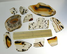 Montana Agate Assortment  Slabs and Polished Pieces Lot B