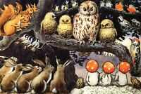 OWL Rabbit Squirrel Forest gnomes Fantasy by Elsa Beskow Russian NEW postcard
