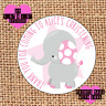 Personalised 24 Christening / Naming Day stickers party labels pink elephant sb