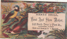 Henry Brill Boot & Shoe Maker Repairs Colorful Birds Vict Card c 1880s