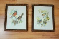 Vintage Pair Paul Whitney Hunter Signed Framed Prints Birds in Trees