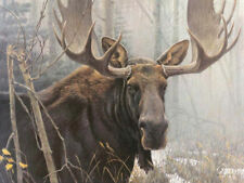 Robert BATEMAN Giclee CANVAS Bull Moose LTD art Stretched ready to hang SIGNED