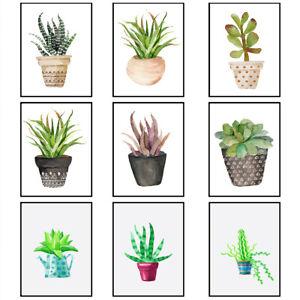 Succulent Plants Art Prints Botanical Wall Poster Picture Bedroom Decor Unframed