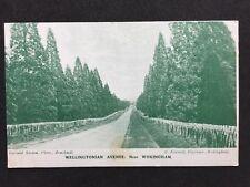 Vintage RPPC: Berkshire: #T84: Wellingtonian Avenue Nr Wokingham