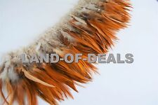 Rooster saddle feathers strung brown natural red bulk wholesale feathers real