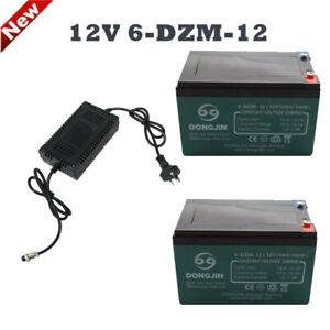 2 Pcs 12V 6-DZM-12 Rechargeable Battery 24V Charger For Quad ATV Scooter Gokart