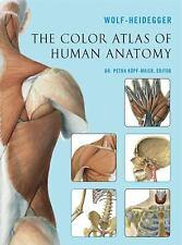 Die Color Atlas of Human Anatomy (exlibs) von Wolf-Heidegger