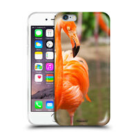 Custodia Cover Design Fenicottero Per Apple iPhone 4 4s 5 5s 5c 6 6s 7 Plus SE