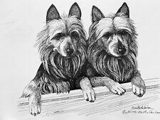 Australian Terrier Heady Study Print 17/500 By Van Loan 11x17�