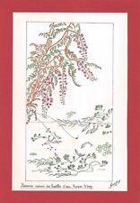 Dessin encre de chine & aquarelle Japon Hand made china ink signé Geneviève n5