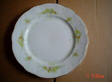Bishop And Stonier Imperial Semi Porcelain Salad Large Side Plate FLORAL