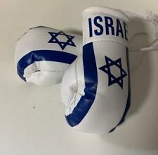 "Israel 🇮🇱 Miniature Boxing Gloves 4""Makes Knockout Souvenir FlÅG Rear View Ca"