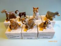 Wade  Various Cats and Dogs Boxed