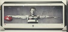 PATRICK DANGERFIELD HAND SIGNED FRAMED GEELONG CATS OFFICIAL DANGER WINGS PRINT
