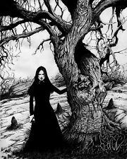 A4 Poster - Pencil Sketch of a Salem Witch Stood Next to a Tree (Picture Gothic)