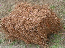Bale of Longleaf Pine Needle Mulch, Longleaf Pine Straw Mulch, Premium Quality