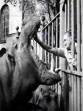 VINTAGE PHOTOGRAPH ZOOLOGY ANIMAL HIPPO KEEPER ZOO POSTER ART PRINT BB12994B