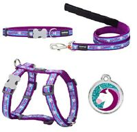 Red Dingo Cute UNICORN Small Dog Puppy Collar Lead Harness ID Tag Size XS PURPLE
