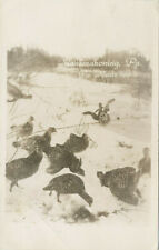 Sinnamahoning pA * PA Route 120 * Wild Turkeys in Snow RPPC Cameron Co.