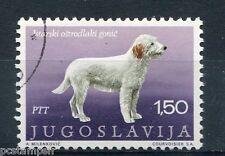 YOUGOSLAVIE - 1970, timbre 1276, CHIEN d' ISTRIE à POIL DUR, oblitéré