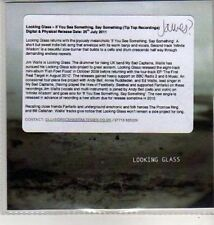(CU302) Looking Glass, If You See Something Say Something - 2011 DJ CD
