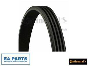V-Ribbed Belts CONTINENTAL CTAM 4PK826ELAST