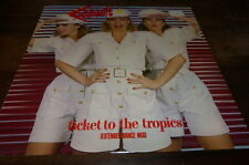 """THE COCONUTS - Vinyle Maxi 45 tours / 12"""" !!! TICKET TO THE TROPICS !!!"""