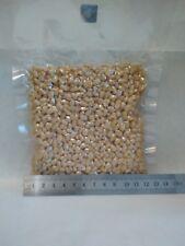 Peeled Siberian (Altay) cedar pine nuts.Vacuum packaging,200 gr