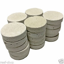 25 Cured Frag Discs for Live Coral Propagation Free USA Shipping