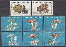 POLAND 1962 Matchbox Label - Cat.Z#301I/308I set, Poisonous fungus.