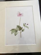 "Stunning Botanical Watercolour Print ""Japanese Anemone"" Artist Signed Giclée"