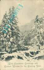 Christmas Greetings winter scene Snow Fir trees Real photo posted peacock Brand